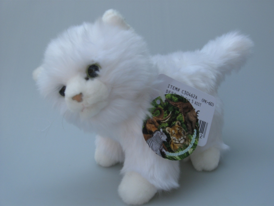 www velká bílá kočička