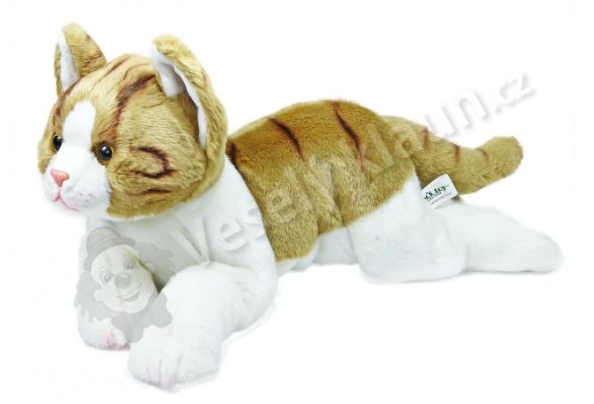Velká velká chlupatá kočička